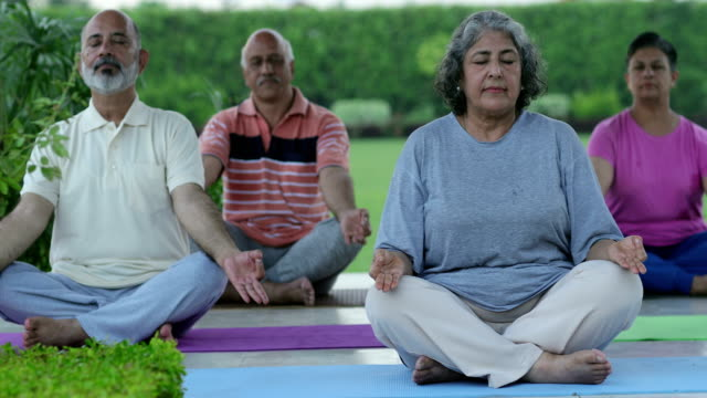 stockvideo's en b-roll-footage met senior men and senior women doing yoga in the park, delhi, india - mindfulness