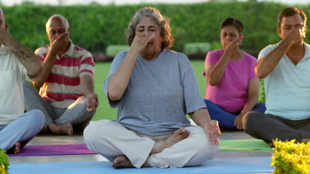 senior men and senior women doing yoga in the park, delhi, india - 60 64 years stock videos & royalty-free footage