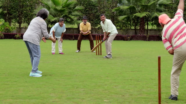 Senior men and senior women playing cricket, Delhi, India