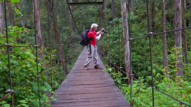 senior men on suspension bridge - ecuador stock videos & royalty-free footage