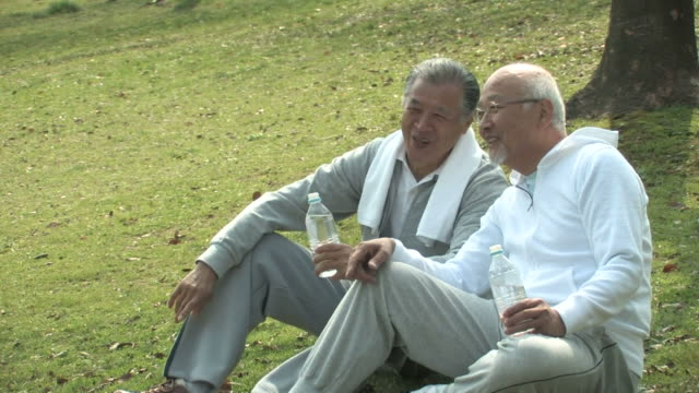 Senior men talking, sitting on grass