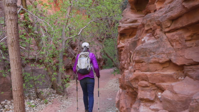 Senior outdoor enthusiast hiking trail with trekking staffs in sandstone canyon
