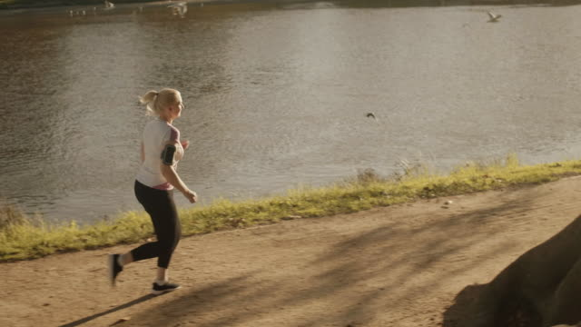 senior runner in melbourne park (slow motion) - 50 54 years stock videos & royalty-free footage
