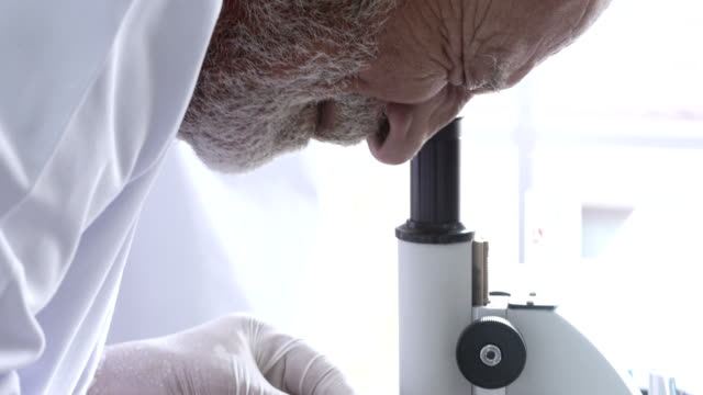 senior scientist using microscope in laboratory - medical test stock videos & royalty-free footage
