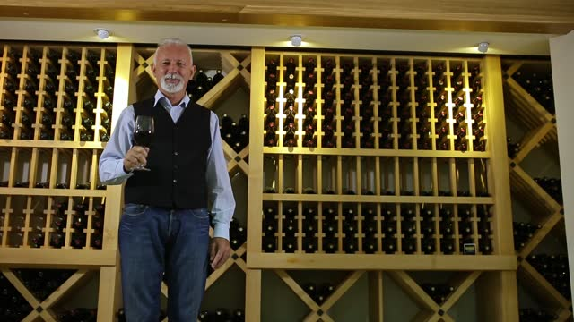 senior winemaker - collection stock videos & royalty-free footage