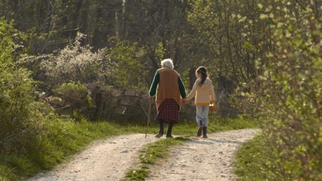 senior woman and child walking down the road. holding hands. - 80 89 years stock videos & royalty-free footage