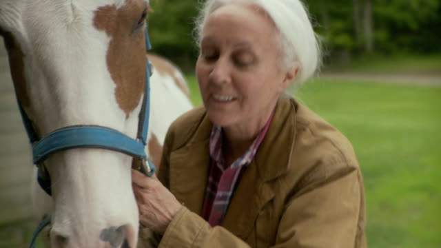 cu senior woman brushing horse hair and smiling / stowe, vermont, usa  - grey jacket stock videos and b-roll footage