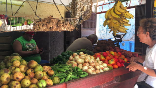 vídeos de stock, filmes e b-roll de a senior woman buys ripe plantain bananas small business and self employment in the caribbean island have come to solve many issues of supply in the... - banana de são tomé