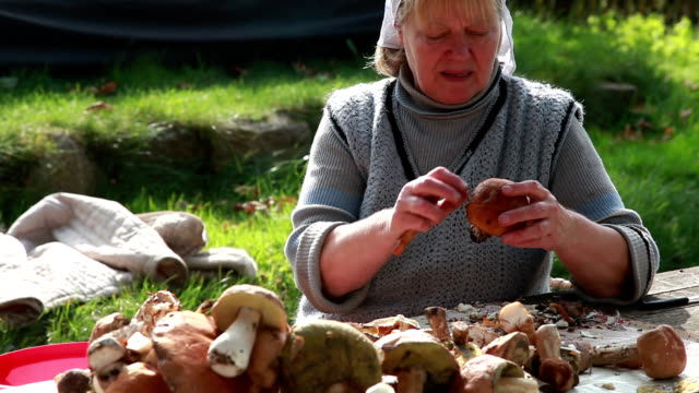 Senior woman cleaning wild mushrooms in the backyard