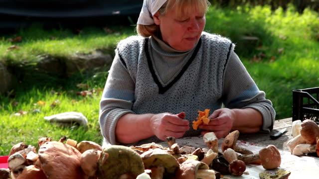 senior woman cleans wild mushrooms - chanterelle stock videos & royalty-free footage
