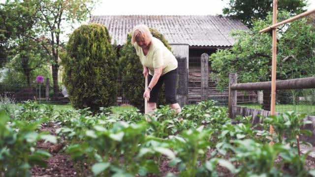 senior woman digging garden - flowerbed stock videos & royalty-free footage