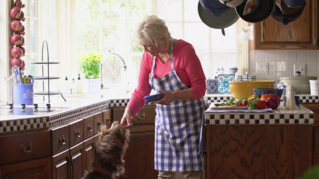 ms senior woman feeding her dog a treat in the kitchen - one senior woman only stock videos and b-roll footage
