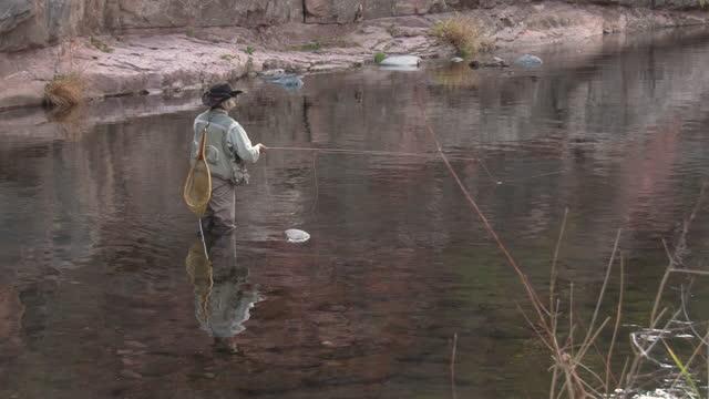 senior woman fly-fishing in oak creek, sedona, arizona - walking in water stock videos & royalty-free footage