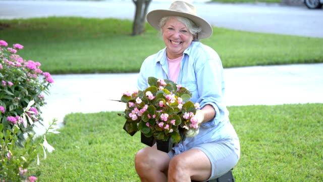 senior woman gardening - gardening glove stock videos & royalty-free footage