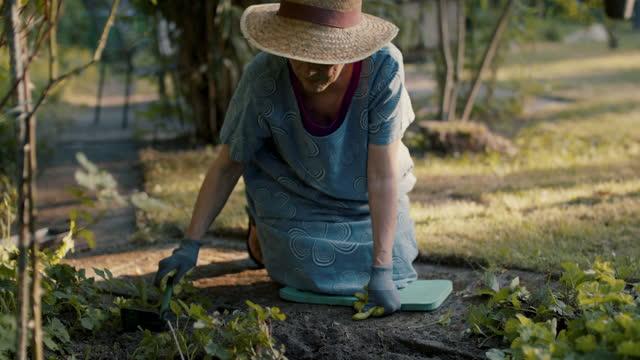 senior woman gardening - flowerbed stock videos & royalty-free footage