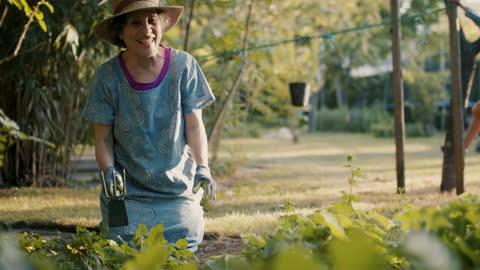 senior woman gardening with grandson climbing in background - active lifestyle点の映像素材/bロール