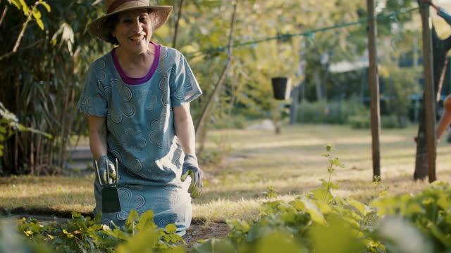 senior woman gardening with grandson climbing in background - gardening stock videos & royalty-free footage