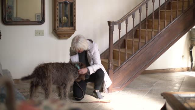 vídeos de stock e filmes b-roll de ws senior woman getting ready to take her dog for a walk - escada objeto manufaturado