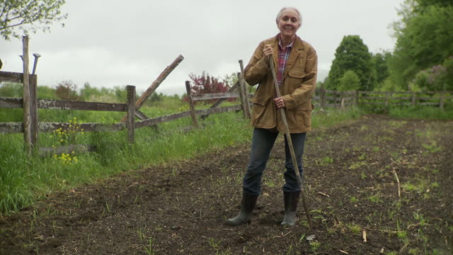 ws senior woman holding hoe and standing in empty garden patch against fence / stowe, vermont, usa - garden hoe stock videos & royalty-free footage