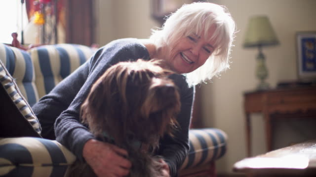 ms senior woman hugging her dog at home - 70 79 jahre stock-videos und b-roll-filmmaterial