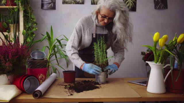 vídeos y material grabado en eventos de stock de a la mujer mayor le gustan sus plantas - cabello largo