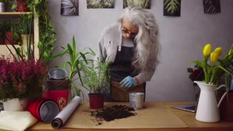 senior woman like her plants - white hair stock videos & royalty-free footage