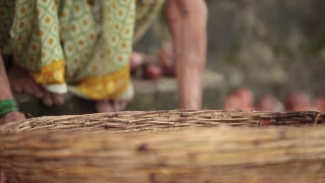 senior woman putting onion into basket, malshej ghat, maharashtra, india - onion stock videos & royalty-free footage