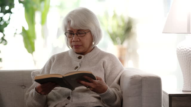 senior woman reading - senior women stock videos & royalty-free footage