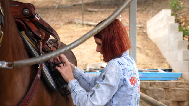 ms senior woman saddling horse in barn before early morning ride - bridle stock videos & royalty-free footage