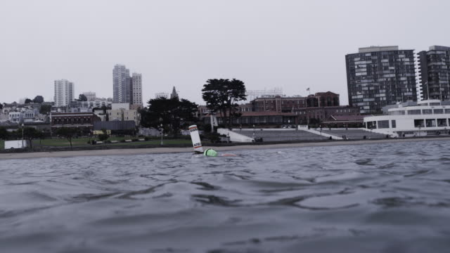 vídeos de stock, filmes e b-roll de senior woman swims in cold, grey san franciso bay with city buildings in background. - baía de são francisco