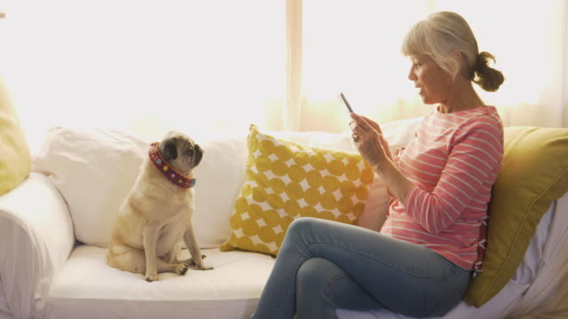 senior woman taking a photo of her dog with her smart phone - 60代点の映像素材/bロール