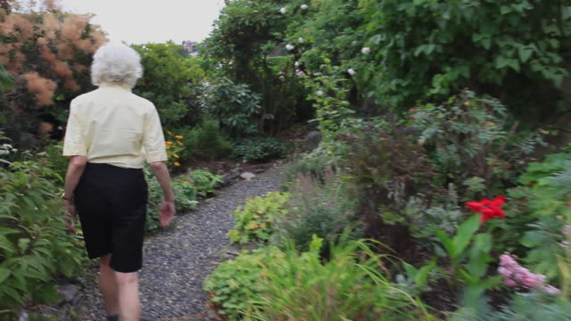 ws pov senior woman walking through and working in her garden / portland, oregon, usa - tights stock videos and b-roll footage