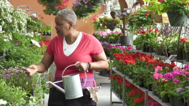 Senior woman watering flowers in a greenhouse