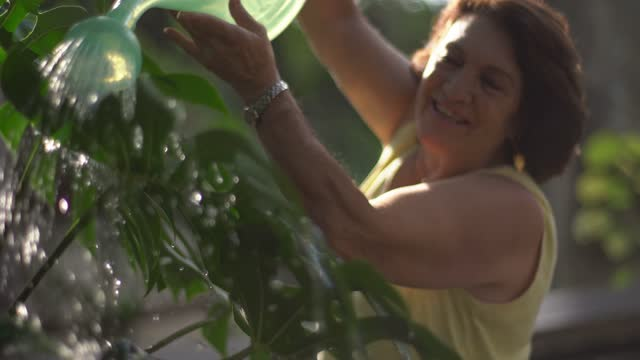 senior woman watering plants at home - active lifestyle stock videos & royalty-free footage