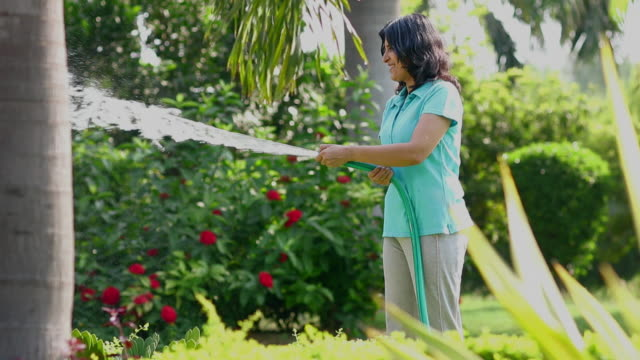 senior woman watering plants in the park, delhi, india - hose stock videos and b-roll footage