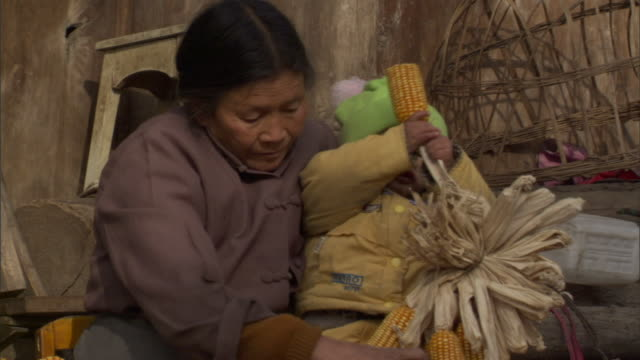 ms senior woman with baby boy on lap tearing corn cobs from husks, baiman village, sichuan, china - husking stock videos & royalty-free footage