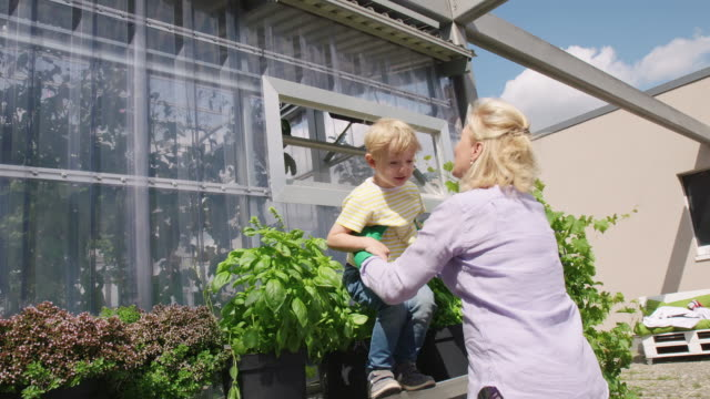 senior woman with her cute grandson in the garden - grandchild stock videos & royalty-free footage