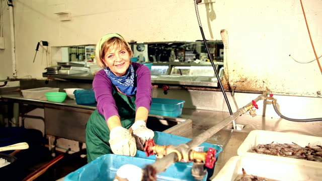 vídeos de stock, filmes e b-roll de mulher sênior trabalhando na fábrica de processamento de marisco - contéiner de plástico