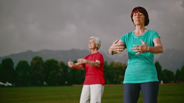 vídeos de stock, filmes e b-roll de slo mo ds mulheres idosas fazendo tai chi na park - overcast