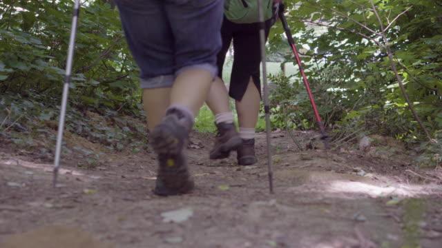Äldre kvinnor vandring