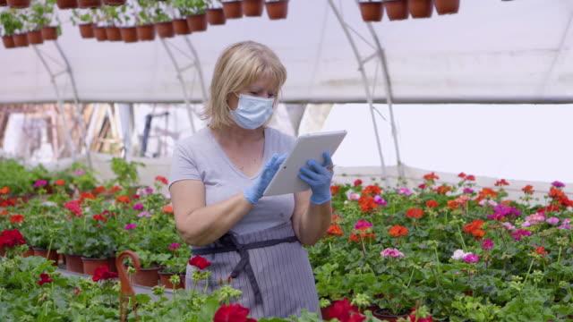 花温室のシニア女性 - フローリスト点の映像素材/bロール