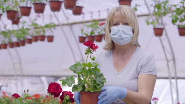 senior women in flower greenhouse - business finance and industry stock videos & royalty-free footage