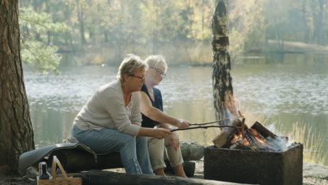 äldre kvinnor på en picknick i en svensk skog - vedbrasa bildbanksvideor och videomaterial från bakom kulisserna