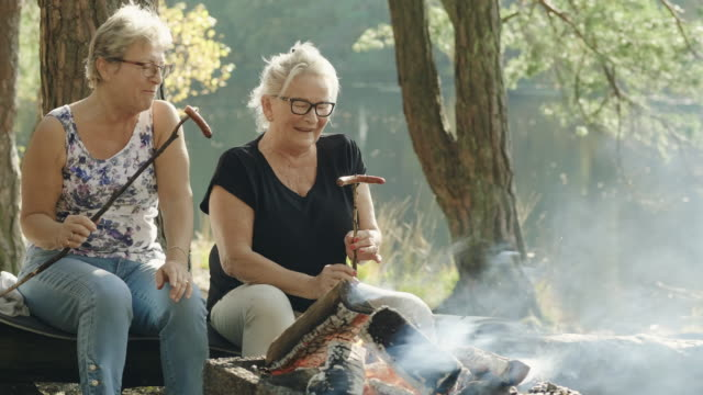 senior women on a picnic in a swedish forest - sausage stock videos & royalty-free footage