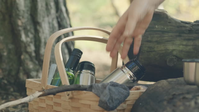senior women on a picnic in a swedish forest - picnic basket stock videos & royalty-free footage