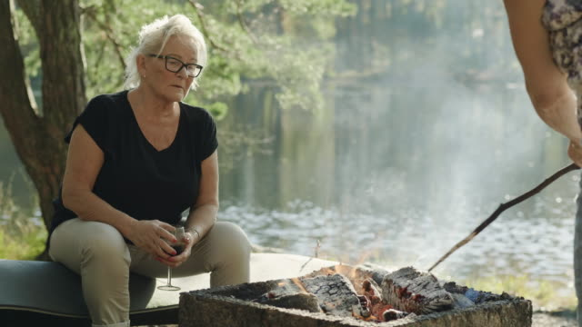 senior women on a picnic in a swedish forest - sunny stock videos & royalty-free footage