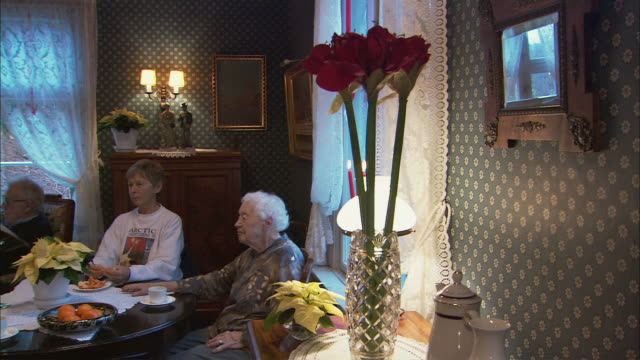 ms pan senior women sitting behind table at nursery home, talking / drobak, akershus, norway - nursing home stock videos & royalty-free footage