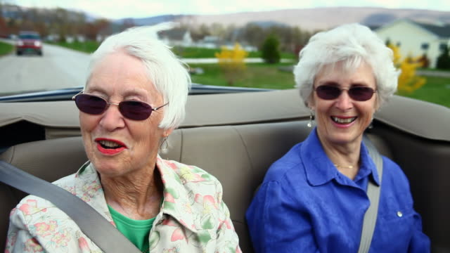 ms senior women sitting in back of convertible car / manchester, vermont, usa - dog convertible stock videos & royalty-free footage