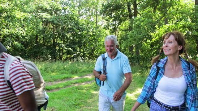 seniors exploring the woodlands - active seniors stock videos & royalty-free footage