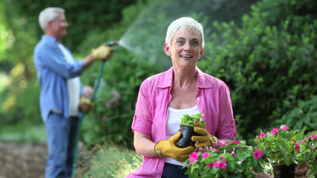 seniors gardening and watering plants - gardening stock videos & royalty-free footage